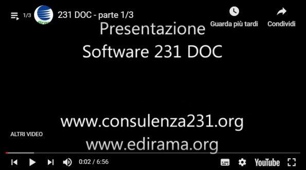 231video